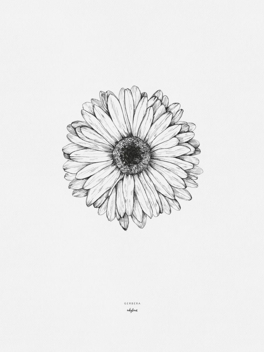 Gerbera Sunflower Tattoos Gerbera Daisy Tattoo Daisy Tattoo