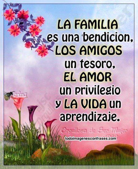 La Familia Los Amigos El Amor Y La Vida Frases De
