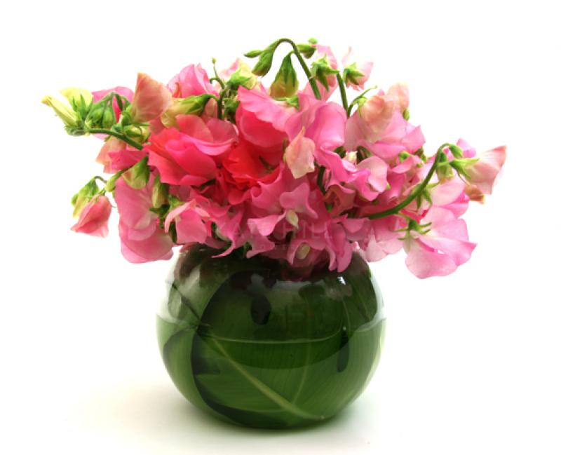 Kate Hill Flowers Flower Delivery Melbourne Order