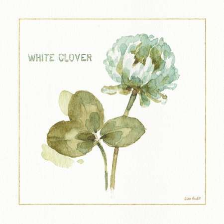 My Greenhouse White Clover