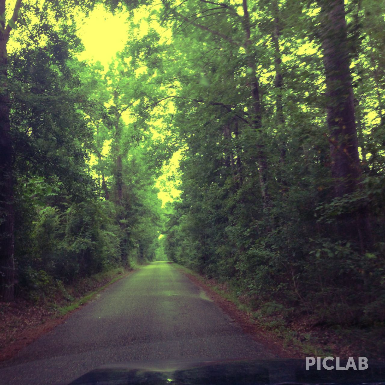 Road In Picayune Mississippi