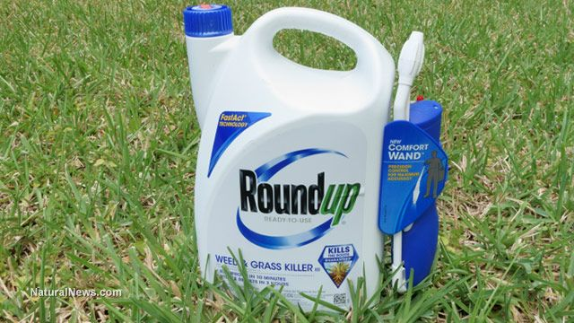 Five Reasons Why Roundup Should Be Banned Forever Natural News Cancer Monsanto