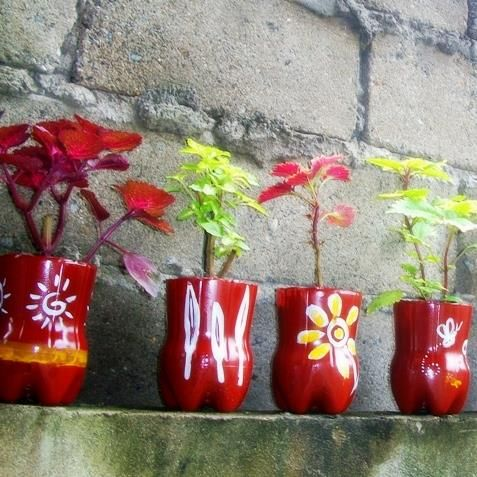 Upcycled pet bottles as pretty coleous planters soda for Pretty plastic bottles