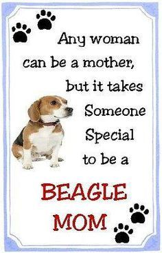 Beagle Mom So True Beagles Are Tough And People Who Don T Have