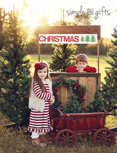 Trees For Sale Christmas Photography Christmas Props Holiday Photography
