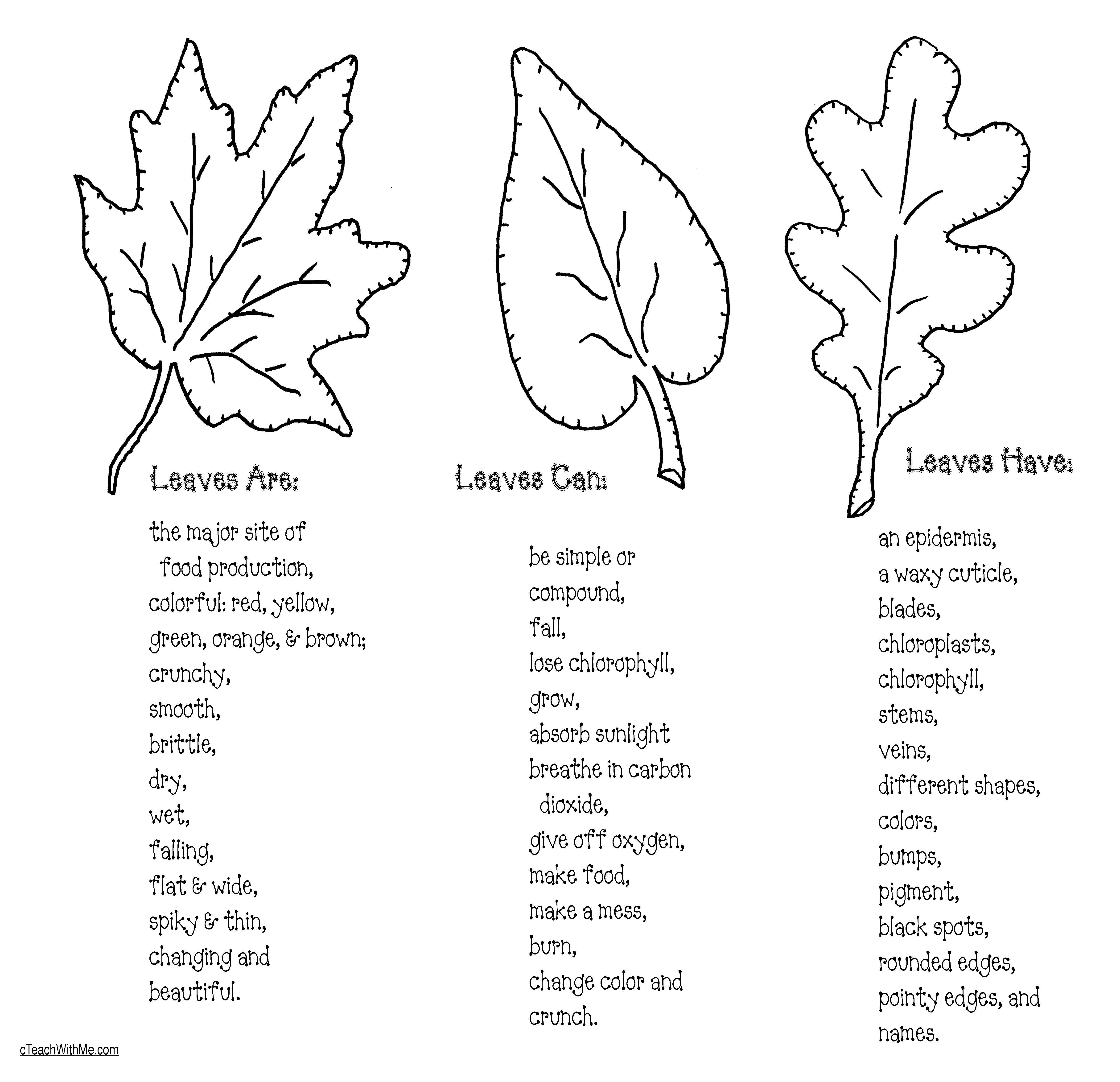 Leaf Crafts Amp Fall Writing Prompts
