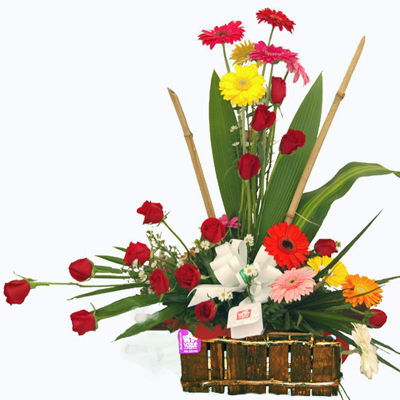 Guatemala: Florales Vogue: Mixtos: Caja Especial Mixta: