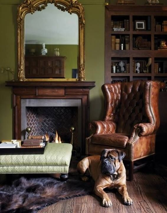 fireplace, armchair and a dog