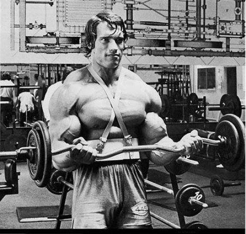 Arnold Schwarzenegger Bodybuilding Workout Routine Schwarzenegger Bodybuilding Arnold Schwarzenegger Bodybuilding Planet Fitness Workout