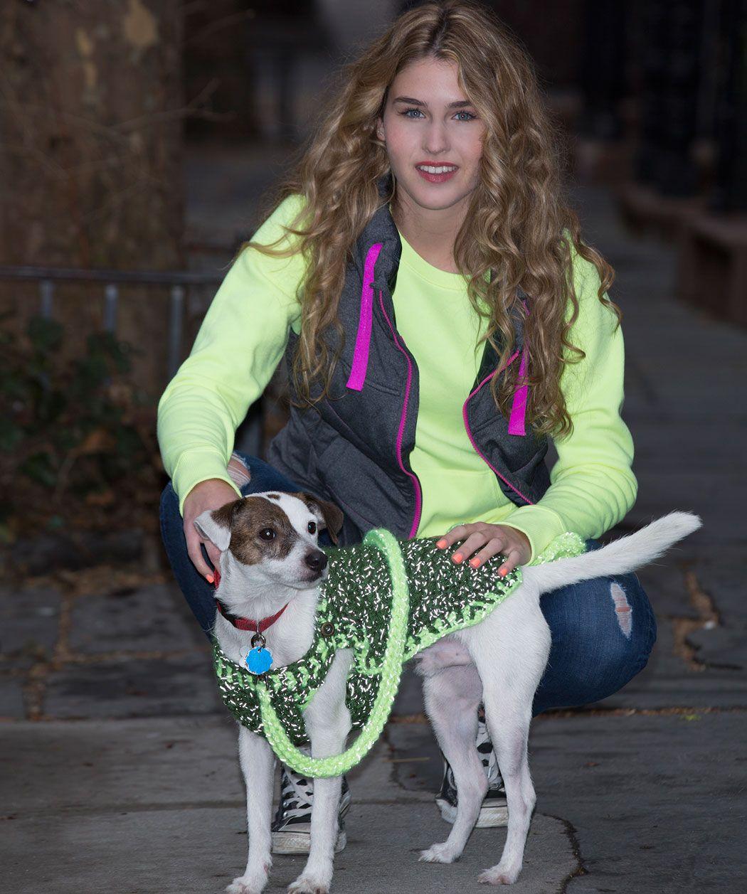 Wenn du diesen Hundemantel mit Blitz fotografierst, wirst du sehen ...