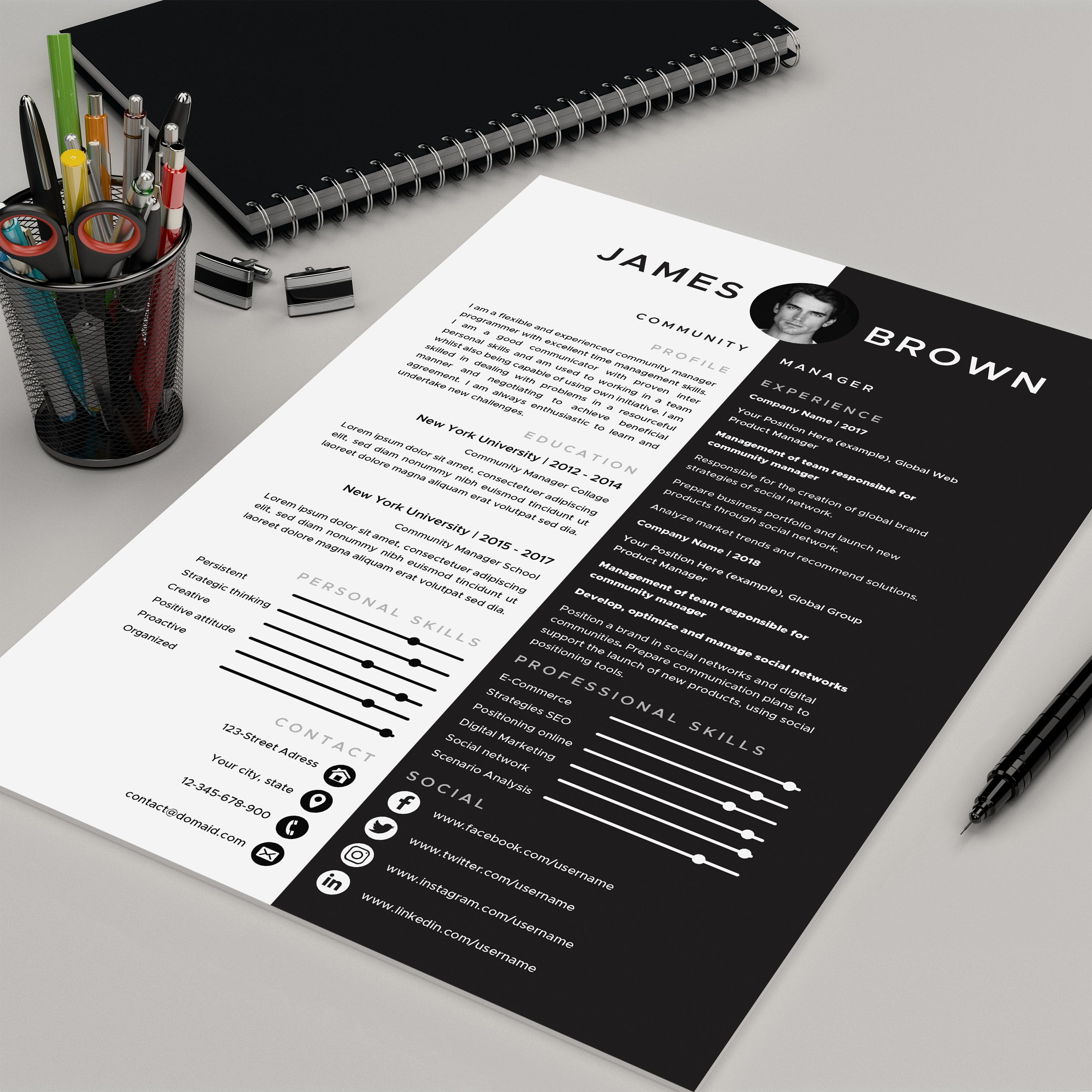Resume template for MS Word 3 page Professional CV