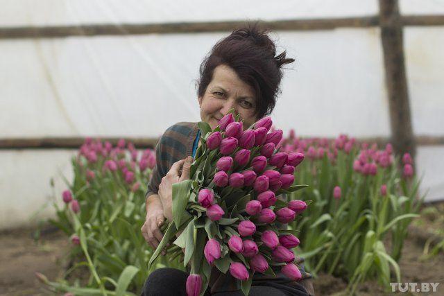 в подольске работа на цветы в теплице