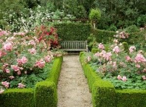 French Country Rose Garden Designs on french country rose art, french country trees, french country cottage gardens, french country flower, french country vegetable gardens,