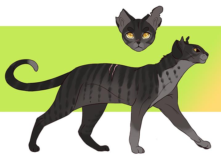 Pin by Mariah Henk on Digital art Warrior cats, Warrior