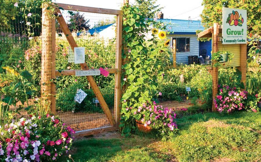 Idaho Community Garden Thrives | Community gardening ...