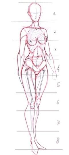 Female Anatomy Drawing Reference Google Search Human Figures