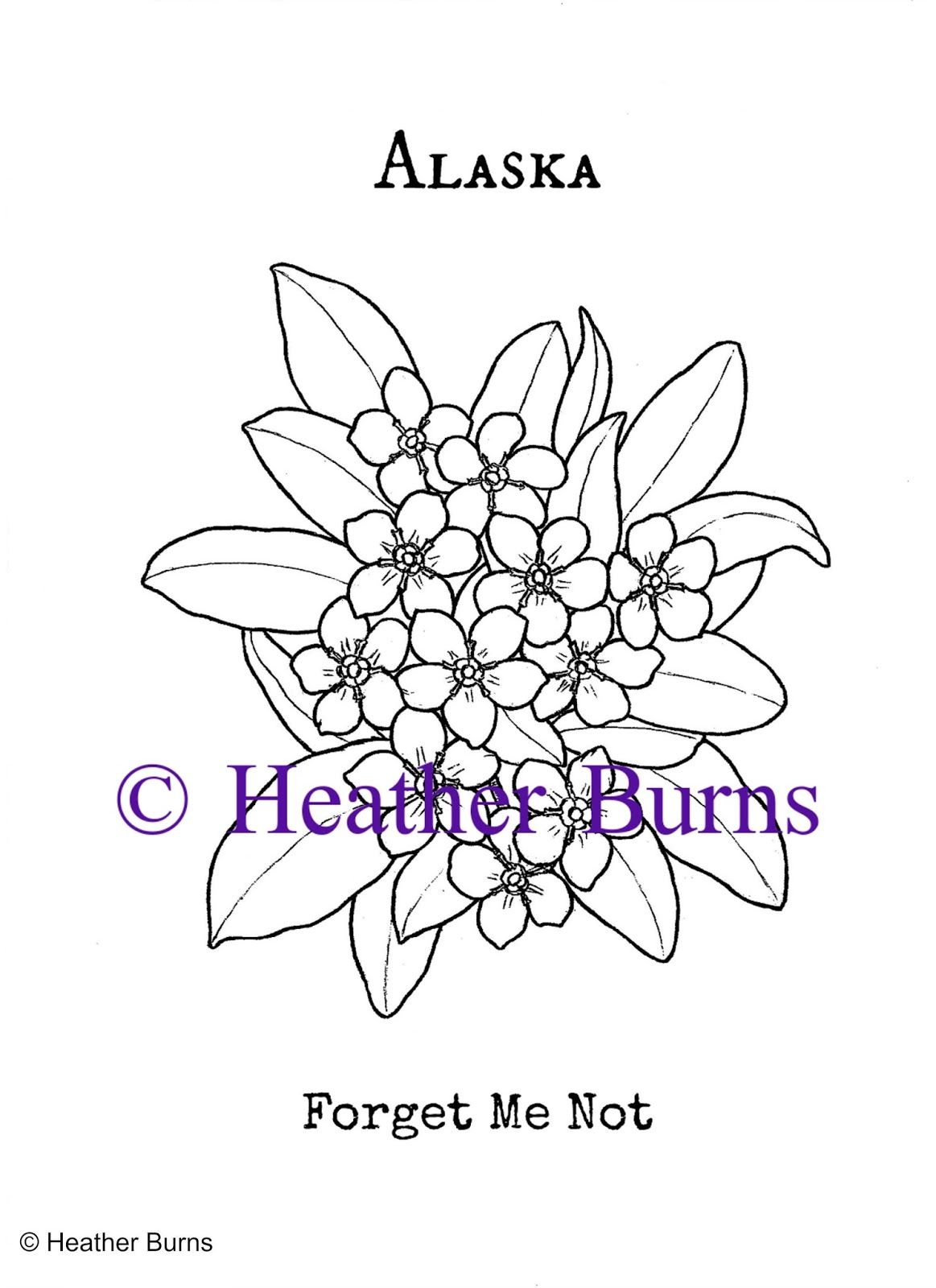 Alaska Forget Me Not Sharpie Doodles Flower Coloring Pages