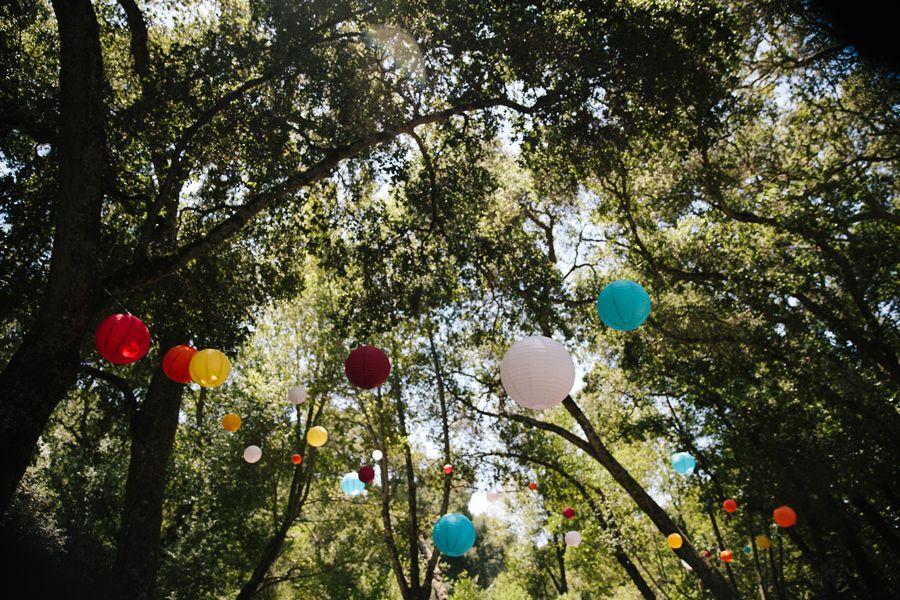 Lauren Kyle S Wedding At Briones Regional Park Wedding Kyle Park