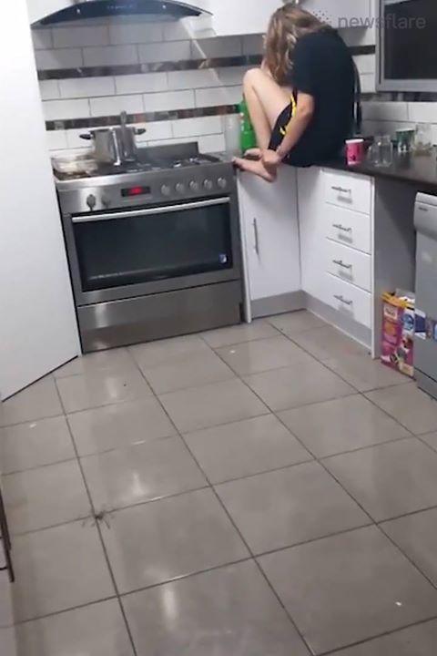 My Girlfriend S Kitchen