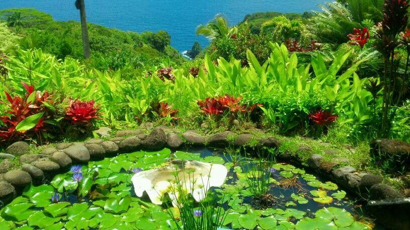 02bfd0835f227798f4ceec192f2dd972 - Hana Maui Botanical Gardens Hana Hi