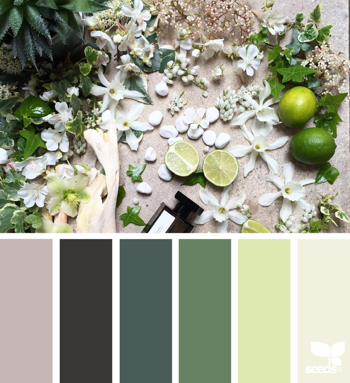 Blautöne Farbpalette: Bunte Designs, Grüne Farbpalette Und