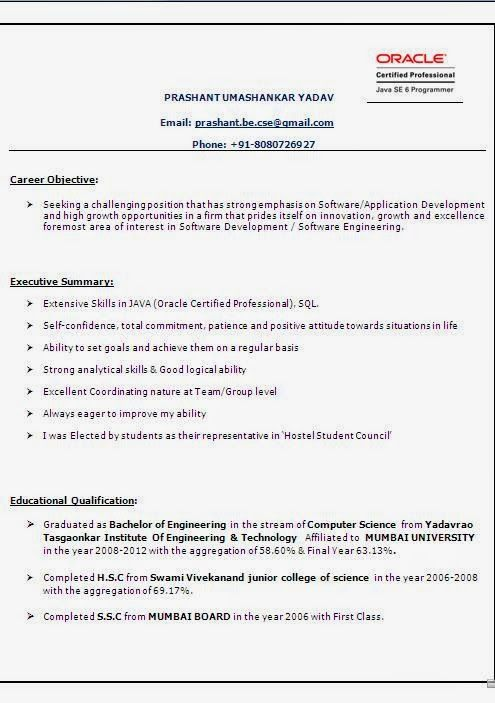 Academic Curriculum Vitae Sample Template Example of Excellent