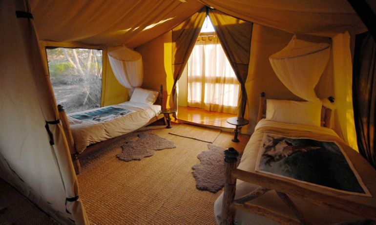 Don't Go Camping - Go Glamping