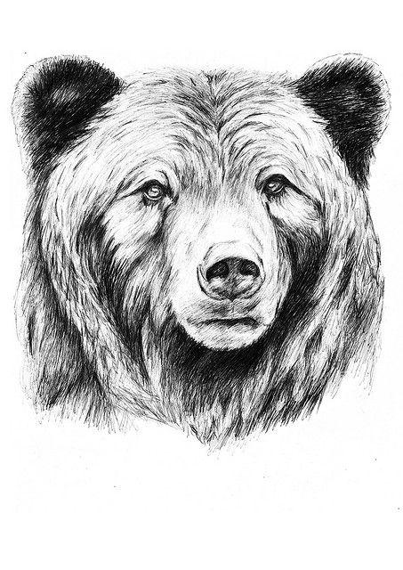 grizzly | tattoos | Pinterest | Tatuajes, Tatuajes de osos y Osos