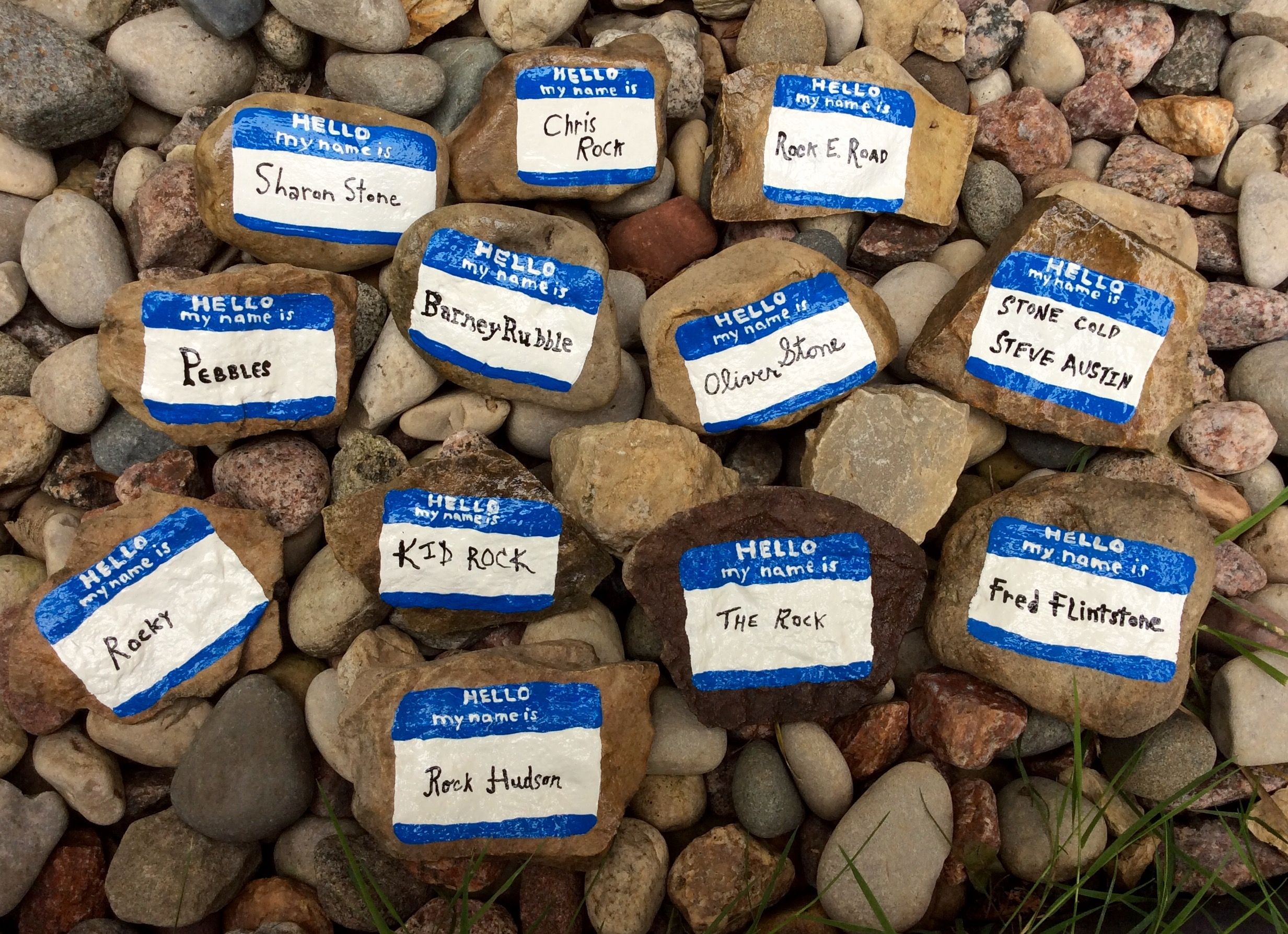 Funny And Clever Painted Rock Name Tags Painted Rocks By Holly N Painted Rocks Kids Painted Rocks Rock Art