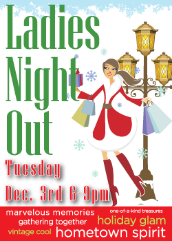 Downtown Glen Ellyn is the place to shop and dine this holiday season. Join us for this year's Ladies Night Out on December 3, from 6 to 9 p.m. This event offers something for everyone, including three brand-new Downtown Glen Ellyn destinations.
