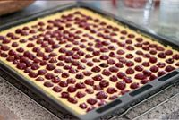 Kirsch-Pudding-Kuchen | Cherry-pudding-cake