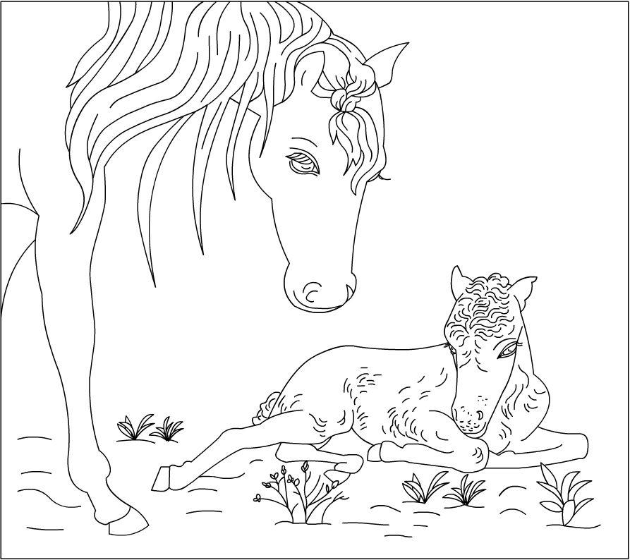 Desenho De Cavalo Correndo Para Colorir Adult Coloring Pages