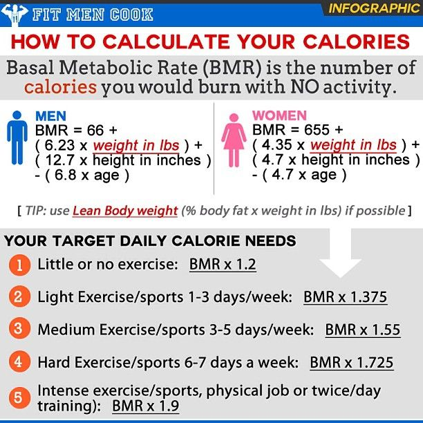 graphic sheet detailing how to count calories  This is the Basal - sample powder burn rate chart
