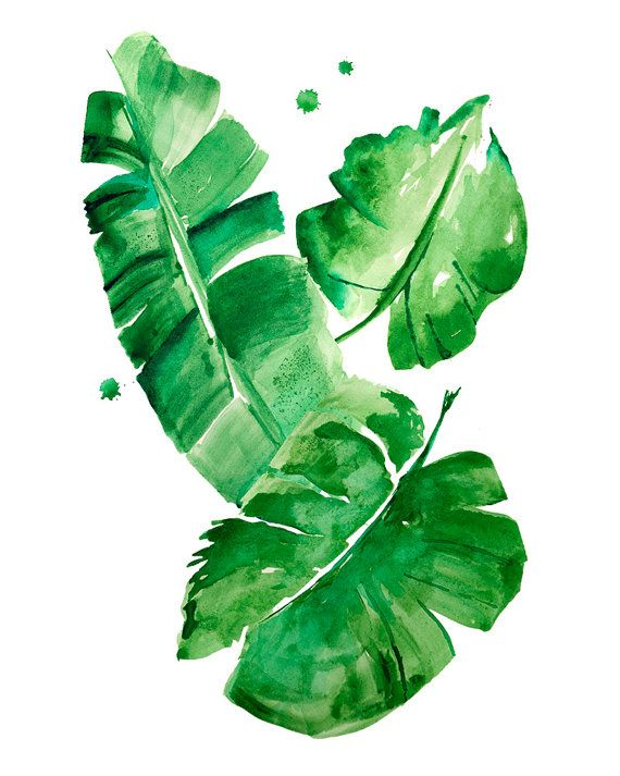 Banana Leaves Watercolor Print Green Wall Art Home Decor Green
