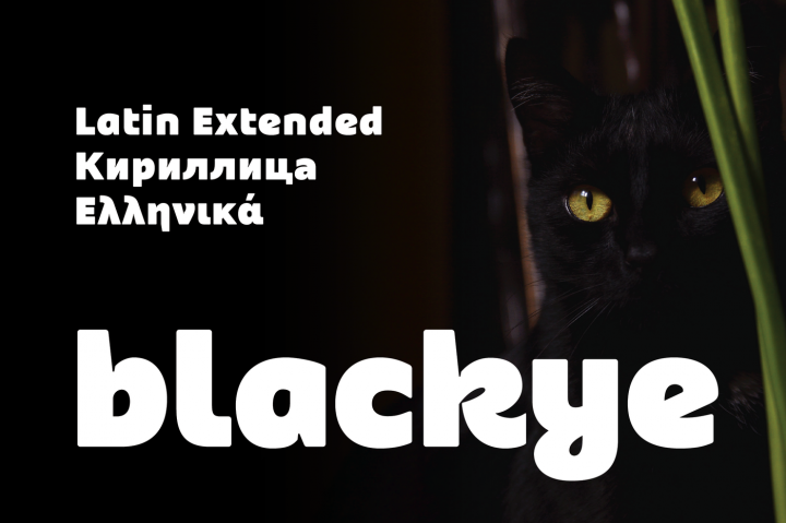 Blackye is a sansserif font with contemporary and