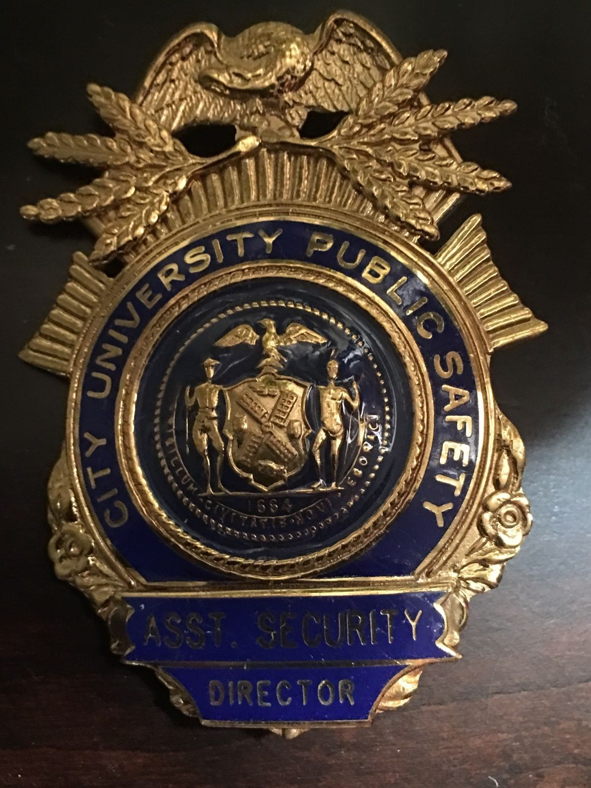 Assistant security director city university public safety