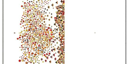 La gara delle coccinelle, di Amy Nielander, Terre di mezzo editore, 2016
