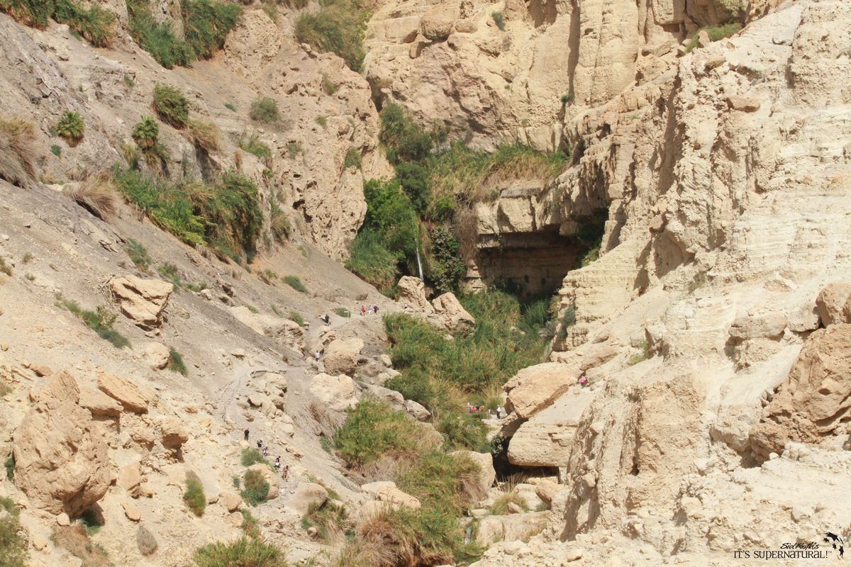 Our tour group took time to have a Bible study overlooking Ein Gedi, the place of David's refuge. I had my recent guest James Durham lead the Bible study and then share with you how God is your stronghold.