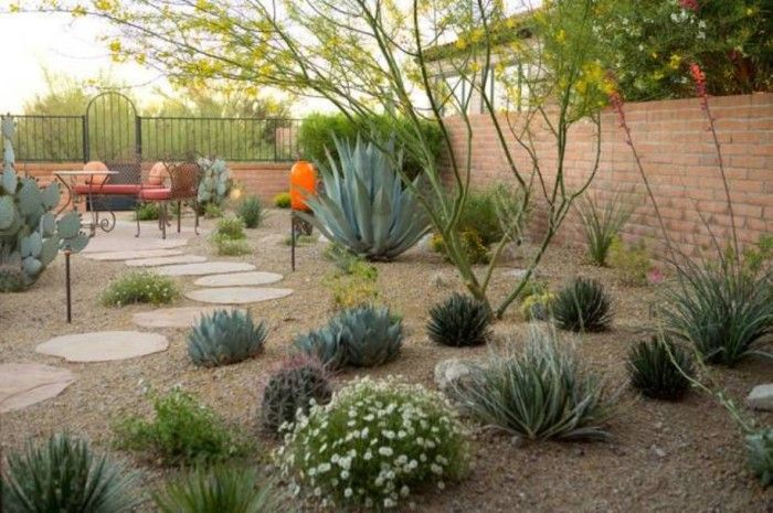 Delicieux Backyard Desert Landscaping , Desert Landscaping For Your Yard In  Landscaping And Outdoor Building Category
