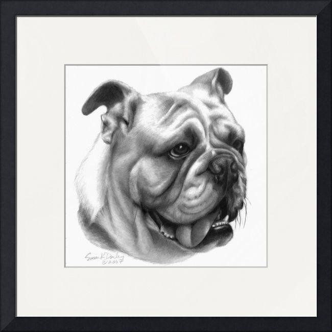 English Bulldog By Susan Donley Kids Bulldog Drawing Bulldog