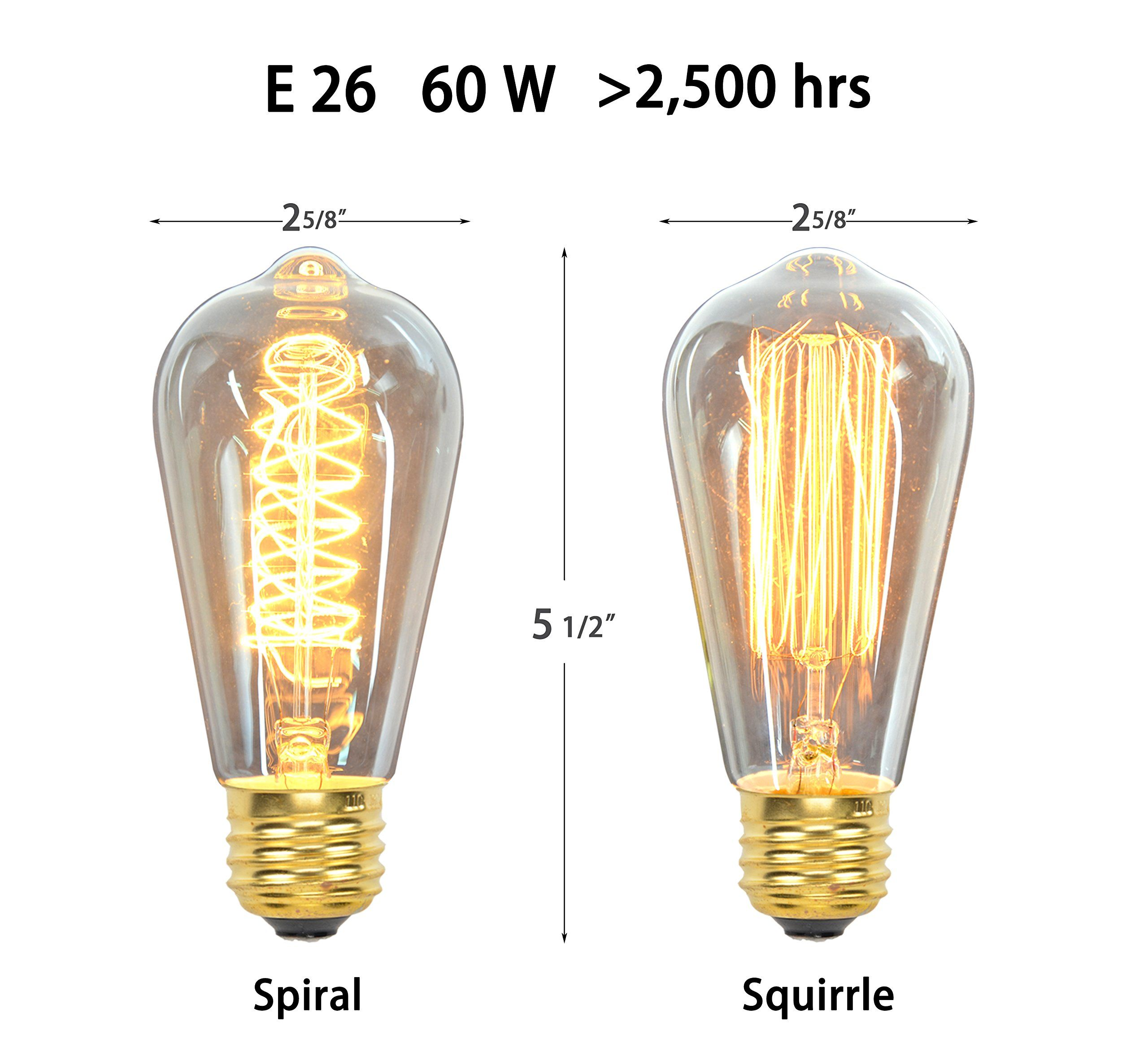 Vintage Edison Bulbs 12 Pack 7 Squirrel Cage Filament Bulbs 5 Spiral Filament Bulbs 60w St64 E26 Squirr In 2020 Vintage Edison Bulbs Vintage Light Bulbs Filament Bulb