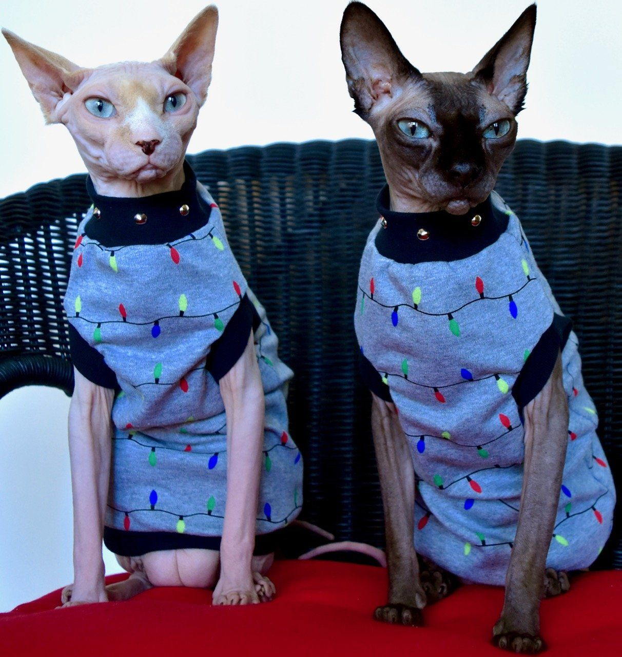 Sphynx clothing made from breathable soft stretch fabrics