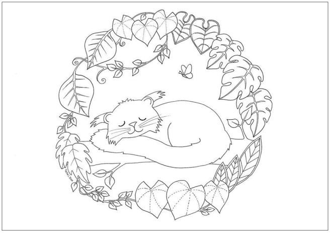 Marvelous Binturong / Bearcat Colouring Page