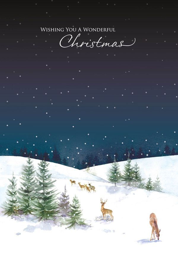The Deer In The Snow | Charity Christmas Card | Christmas cards ...