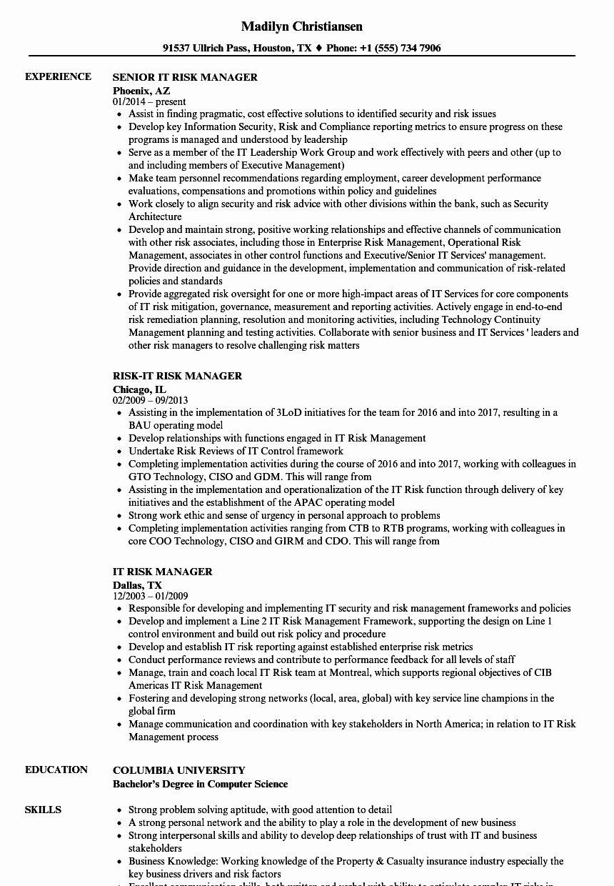 23 It Manager Resume Examples in 2020 Manager resume