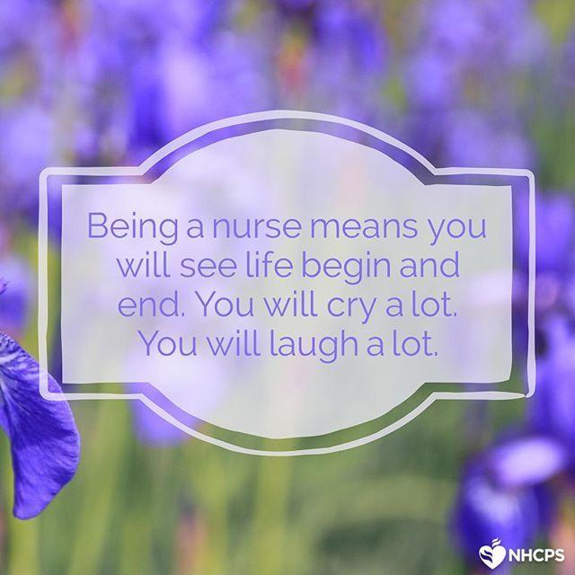 nursing meaning nhcps lamp lady nurse