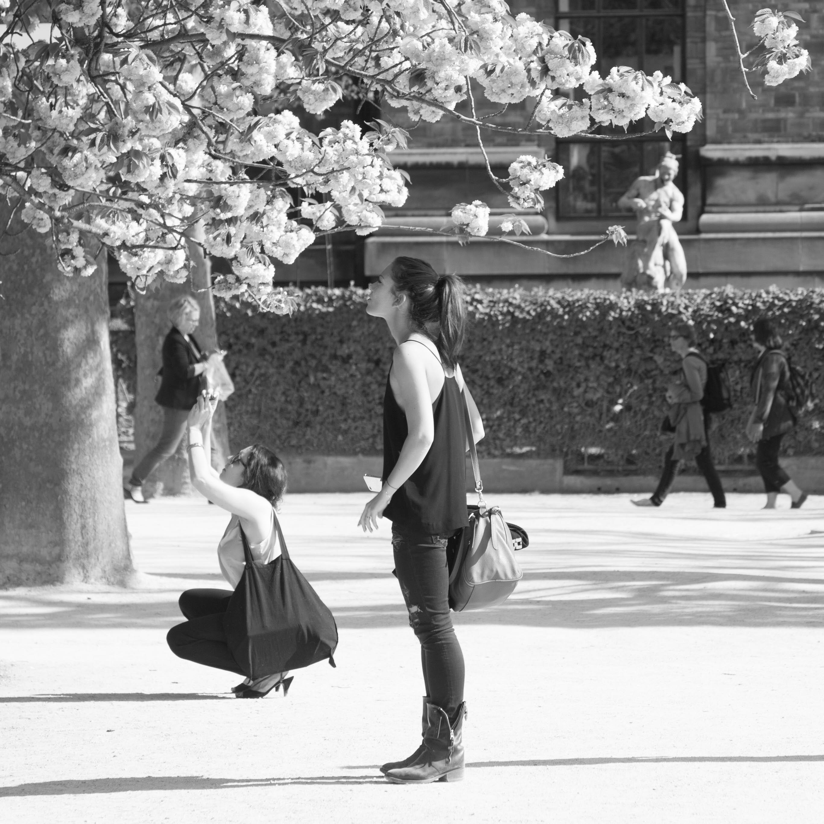 Au jardin des plantes - Paris