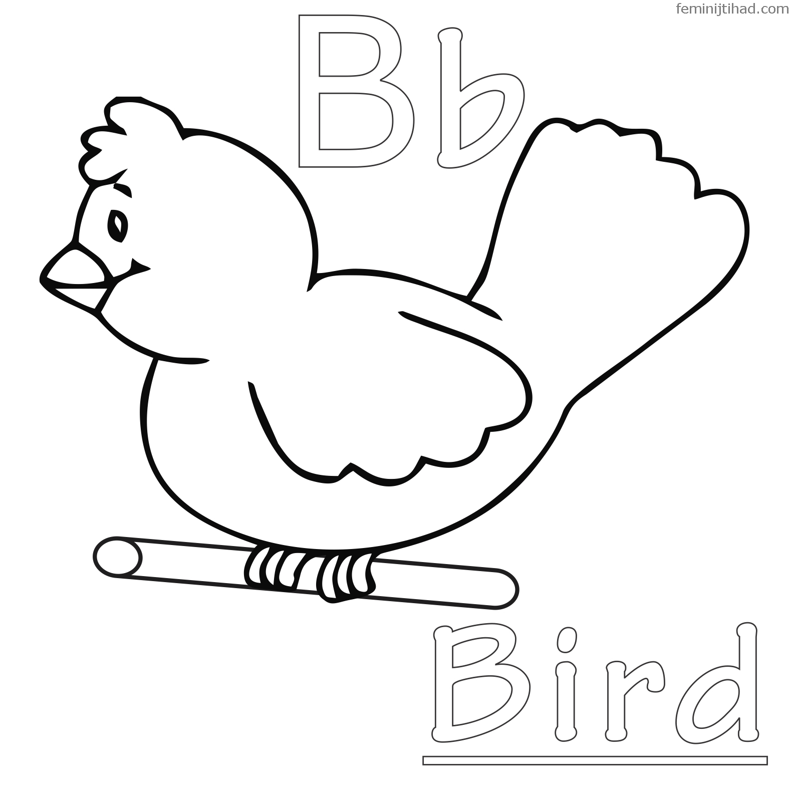 Free Bird Coloring Pages For Your Kids With Images