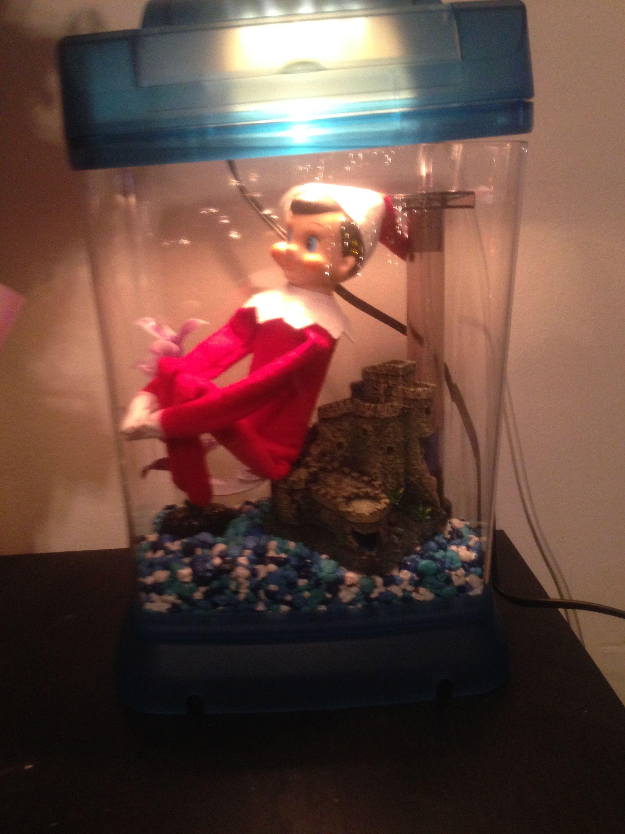 Elf on the Shelf Fish Tank