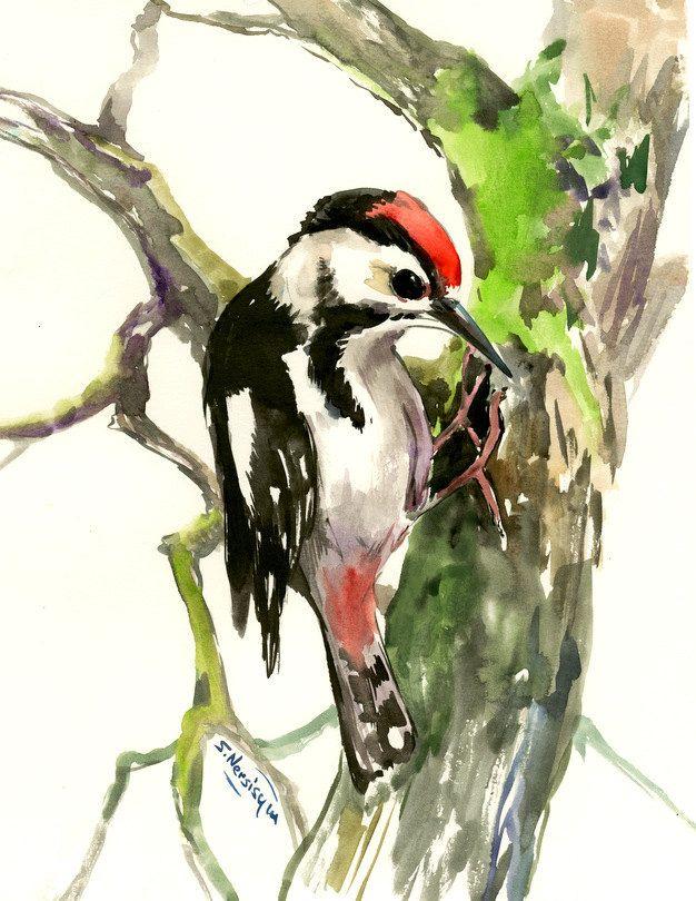 Downy Woodpecker, bird art, 14 x 11 in, watercolor ...